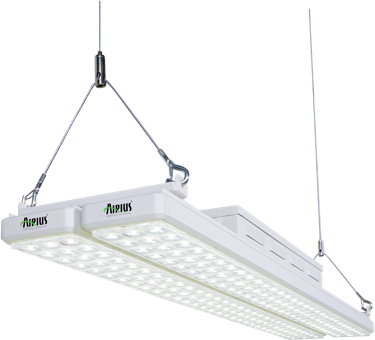 LED Lighting Solutions Linear Bay Led Light