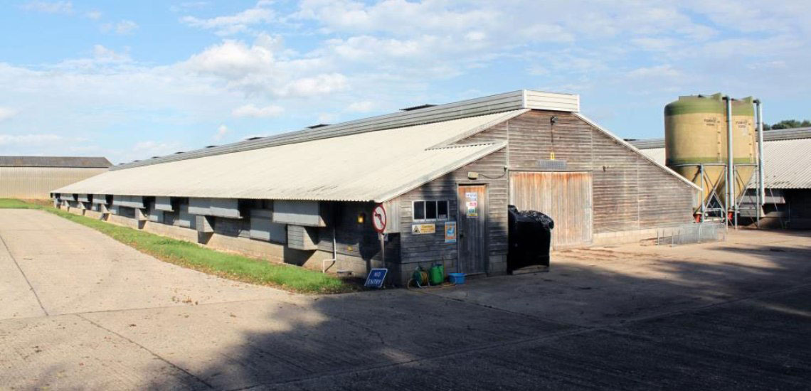 Destratification System Poultry Shed